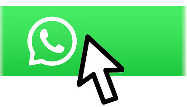 Link a whatsapp